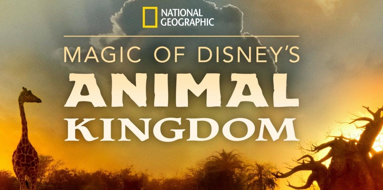 disneys animal kingdom magic