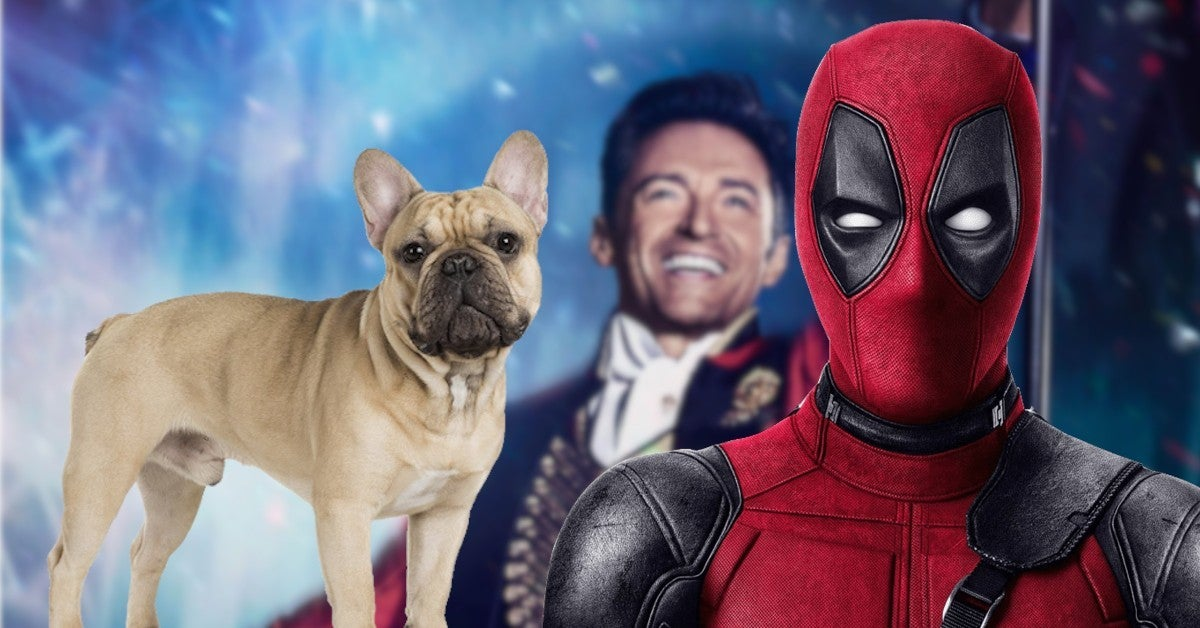 Hugh Jackman Dancing French Bulldog Dali Viral Video Ryan Reynolds Comments