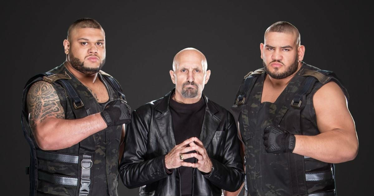 WWE-Paul-Ellering-AOP-Authors-of-Pain