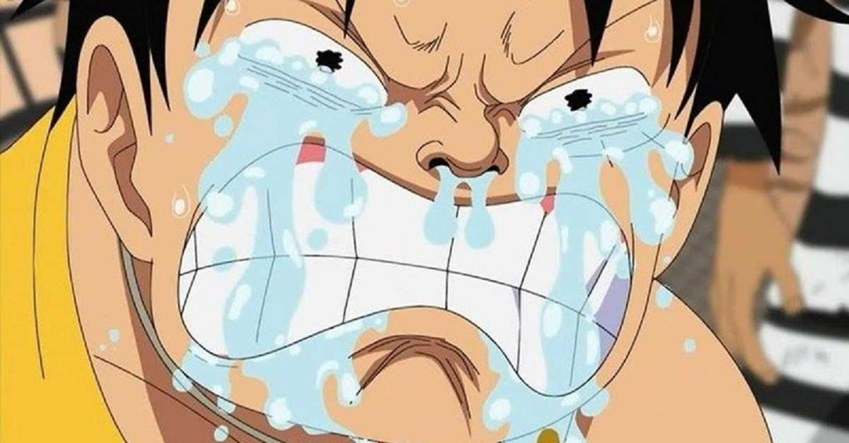 One Piece Emotional Story Viral