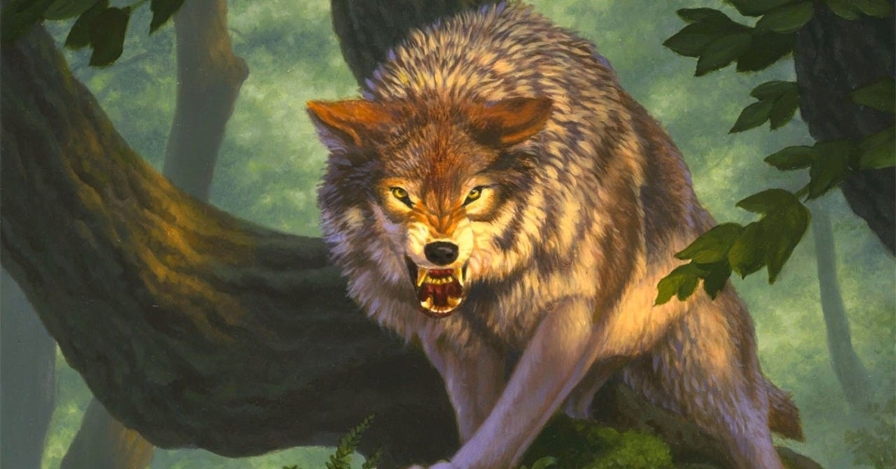 Dungeons & Dragons Expansion Will Provide New Rules for Animal Sidekicks - ComicBook.com