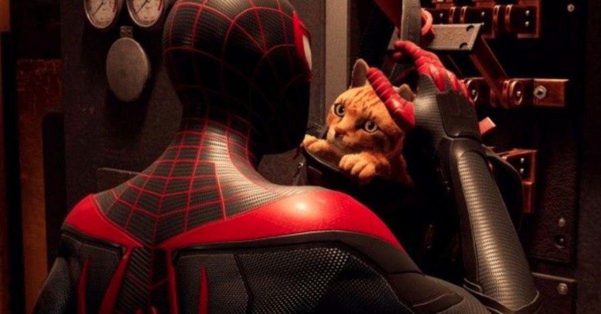 Miles Morales Spider-Cat