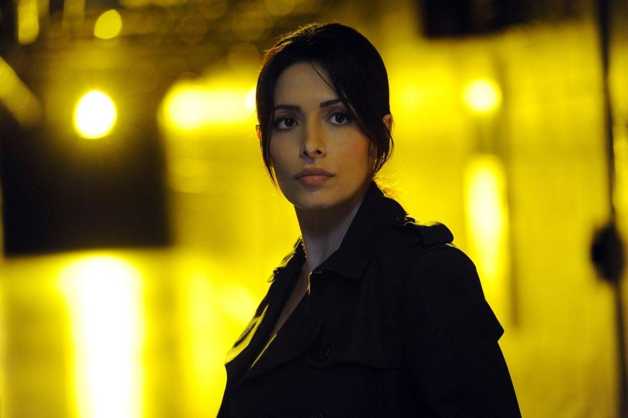 sarah shahi person of interest