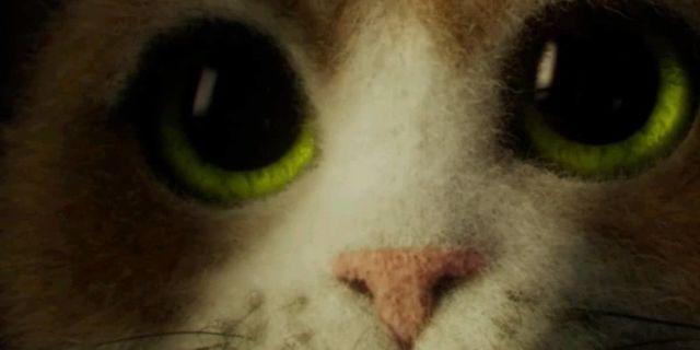 temptations-cat