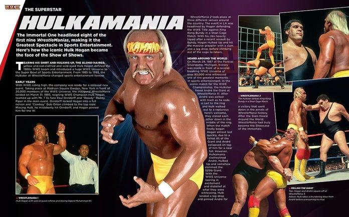 WWE-Hero-Collector-Box-Set-Hulk-Hogan-Andre-The-Giant-9