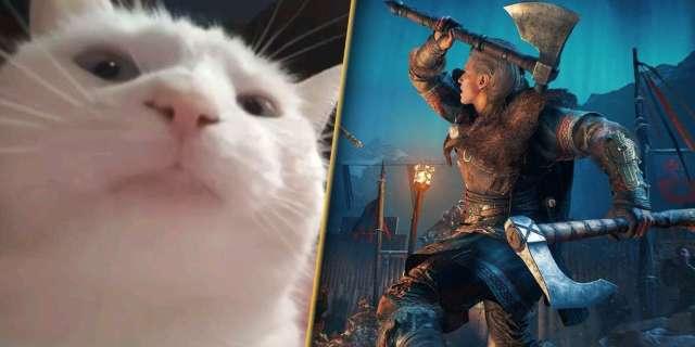 assassins-creed-valhalla-cat