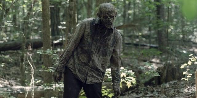 The Walking Dead Season 10 zombie walker