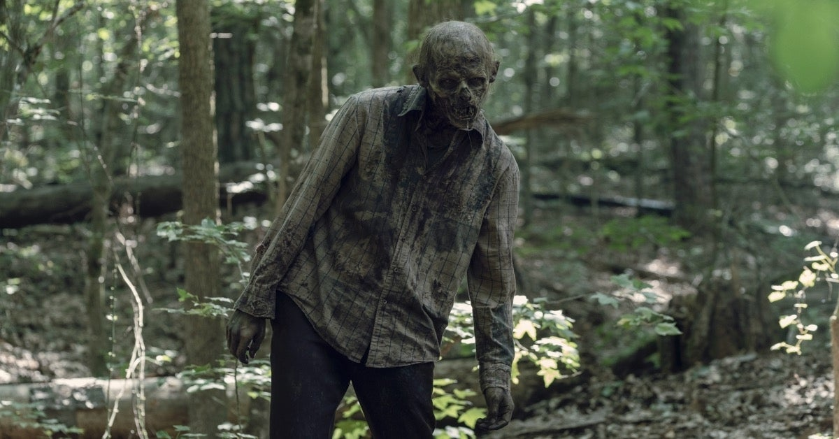 The Walking Dead Season 10 zombie walker
