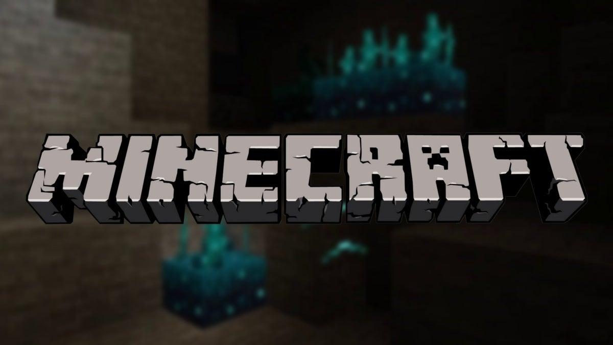 Minecraft Biome