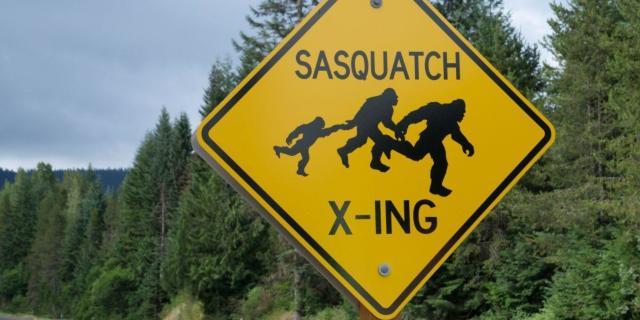 bigfoot hunting season