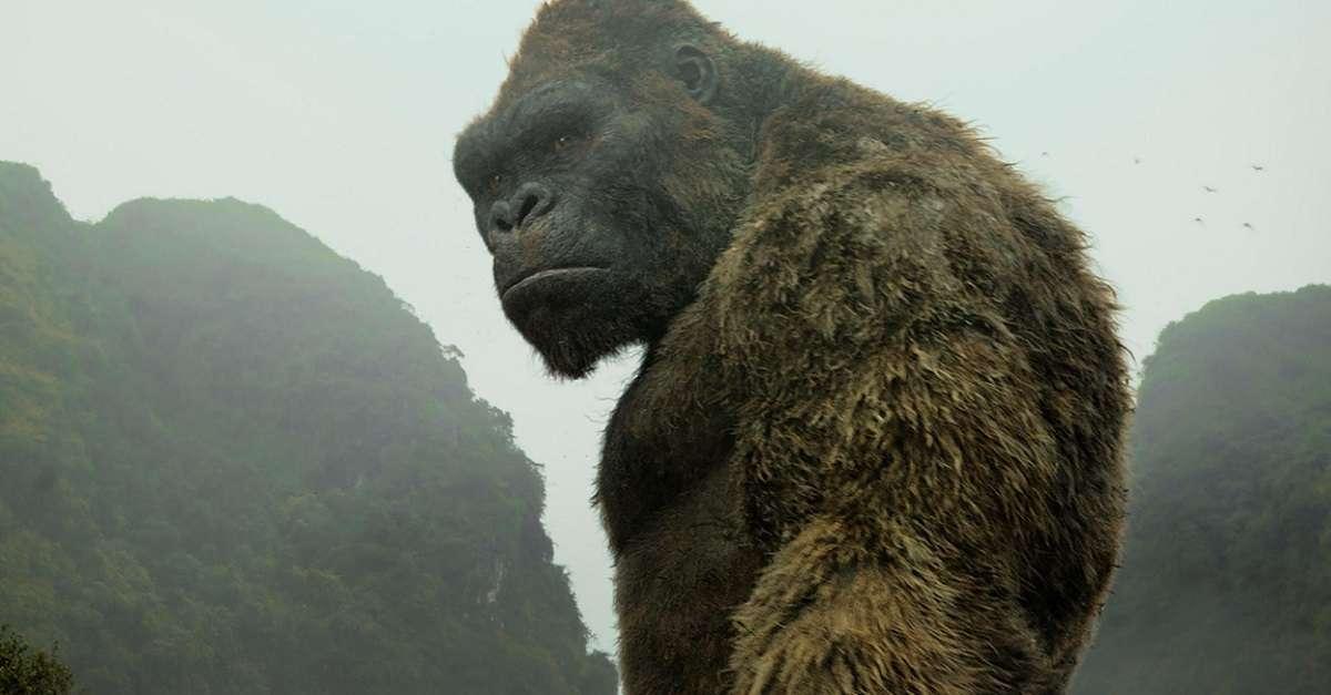 Godzilla Vs Kong Role