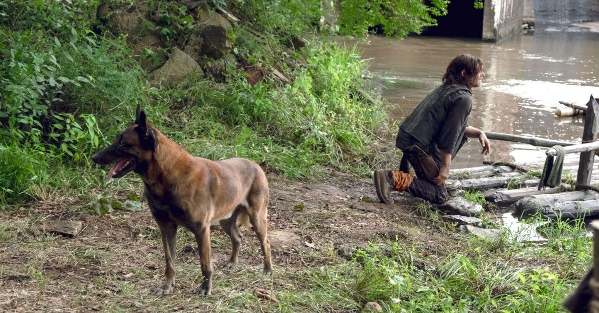 The Walking Dead Daryl and Dog