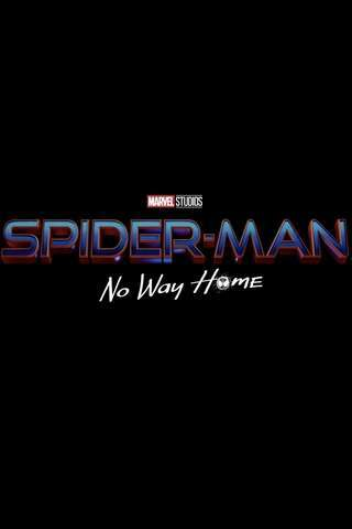 spider-man_no_way_home_default