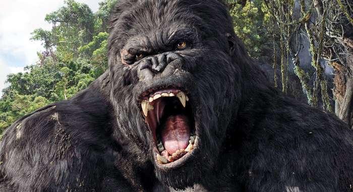 2005 King Kong