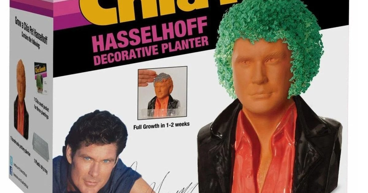david-hasselhoff-chia-pet-top