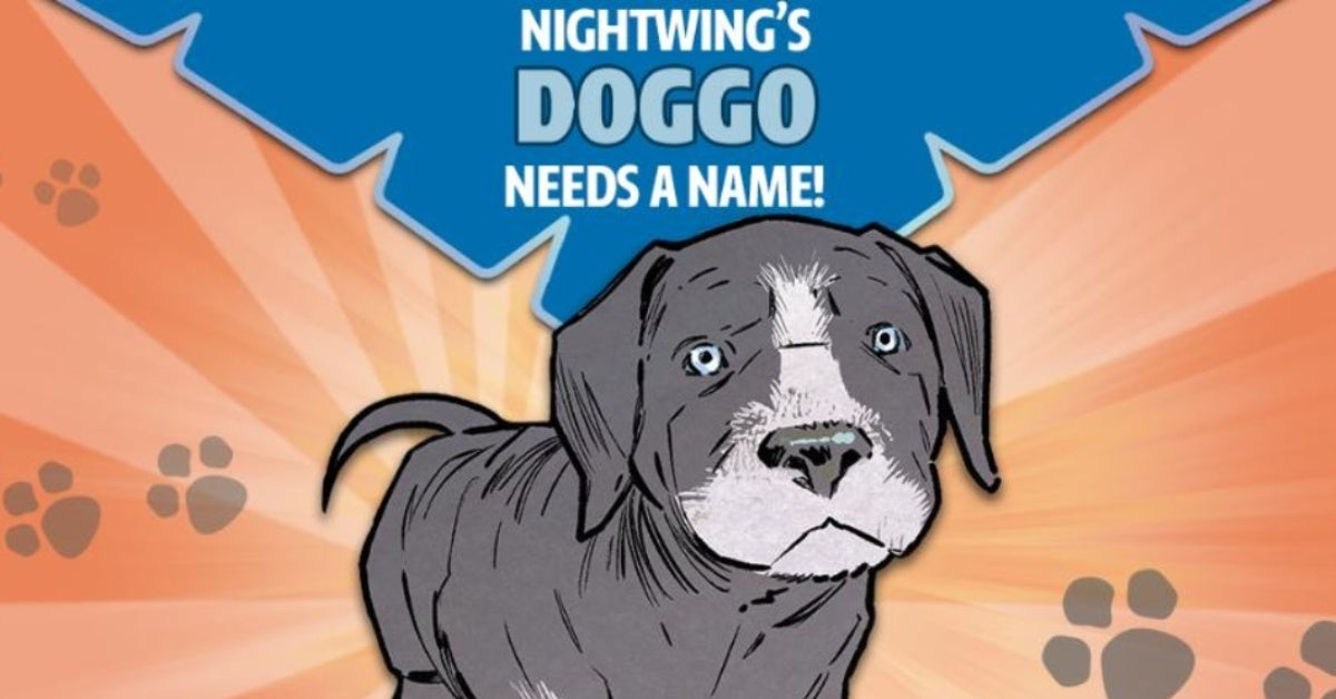 nightwing puppy name contest infinite frontier