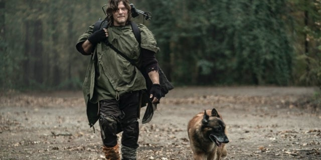The Walking Dead Daryl Dog Find Me