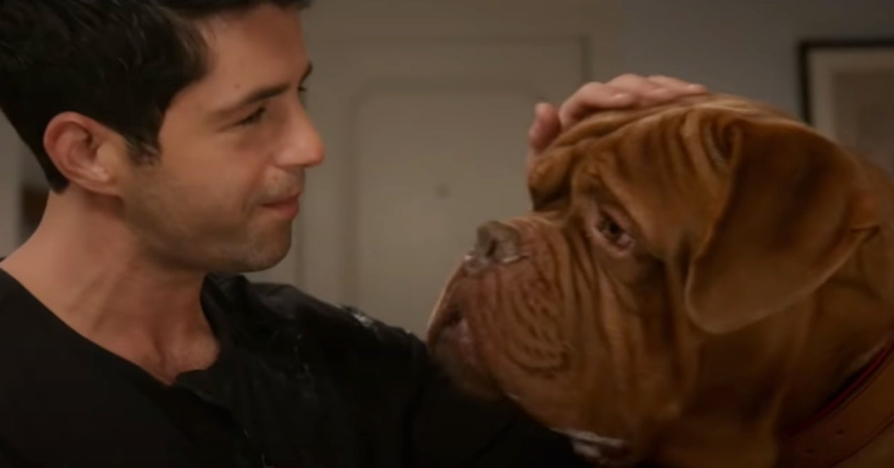 """Turner And Hooch Season 1 Episode 1 """"Forever And A Dog"""" Release Date & Trailer"""