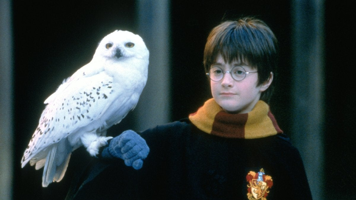 Harry Potter 2021 Specials