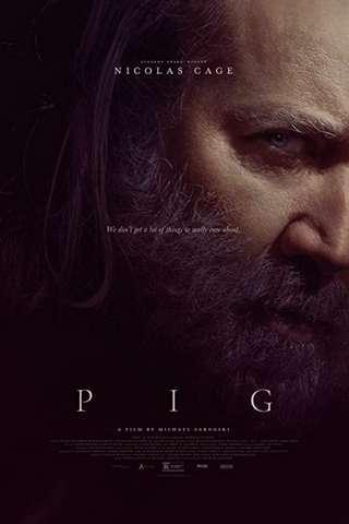 pig_default