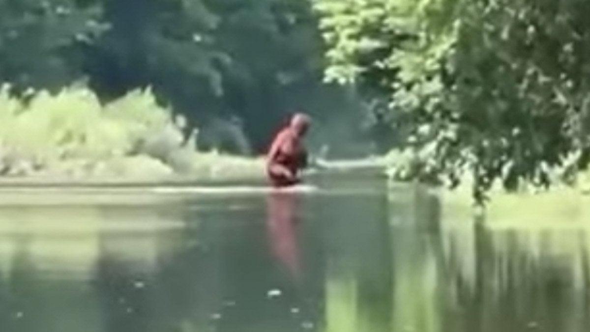 bigfoot-michigan-sighting