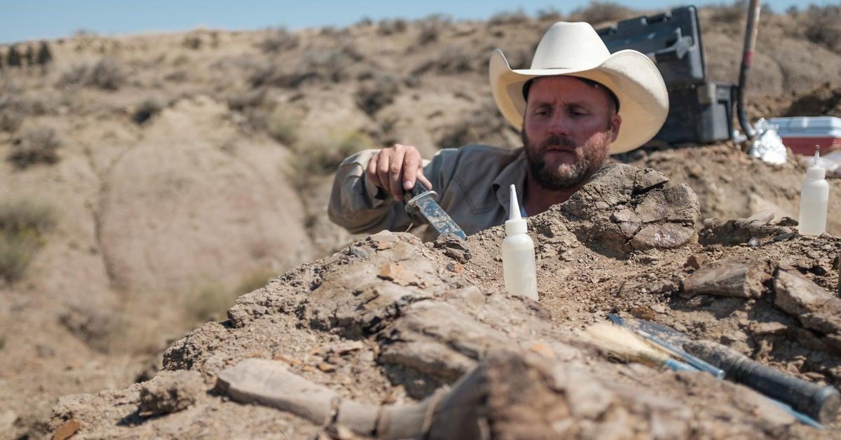 Discovery Channel's Dino Hunters - Season 2 Promo