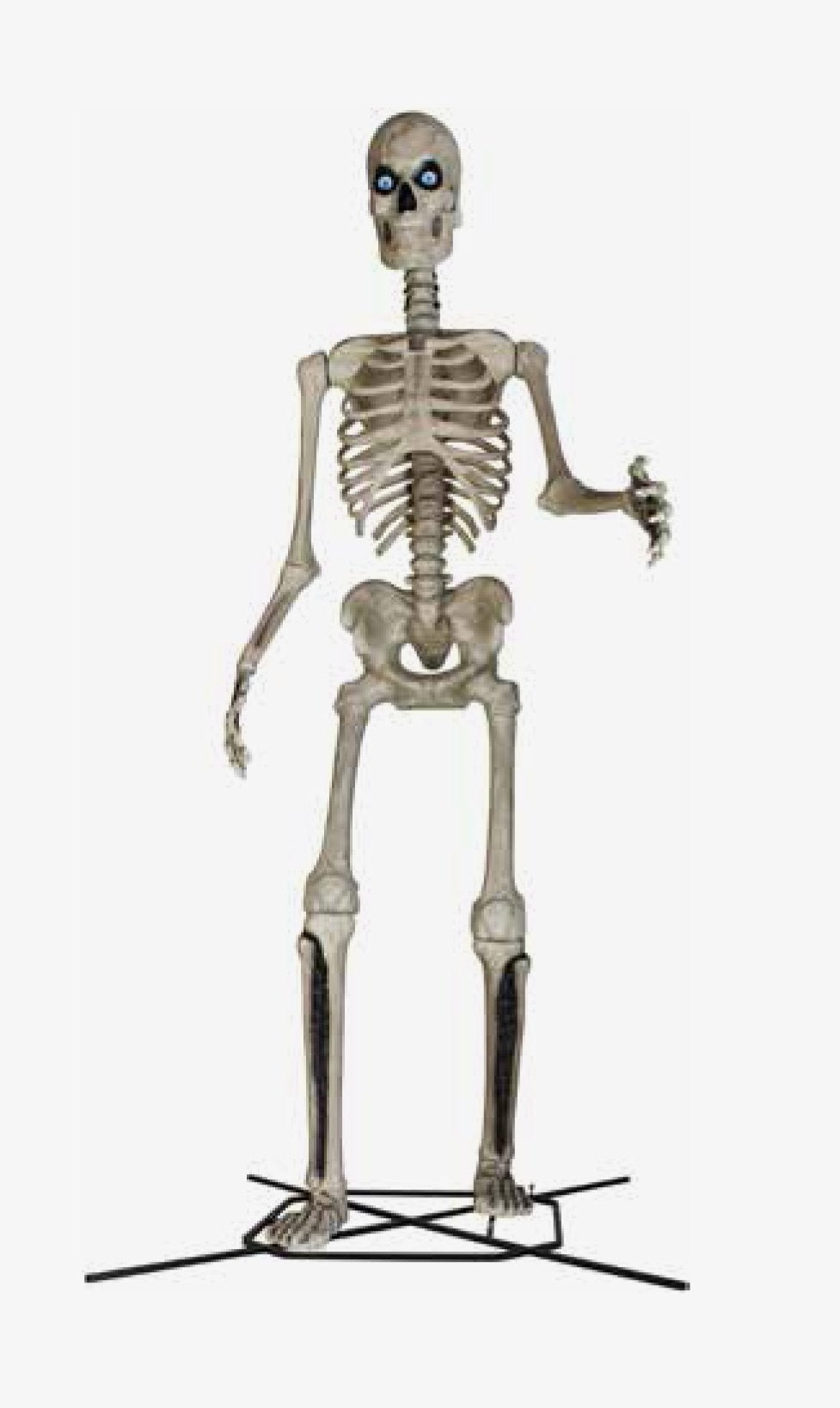 home depot big skeleton 12 foot halloween