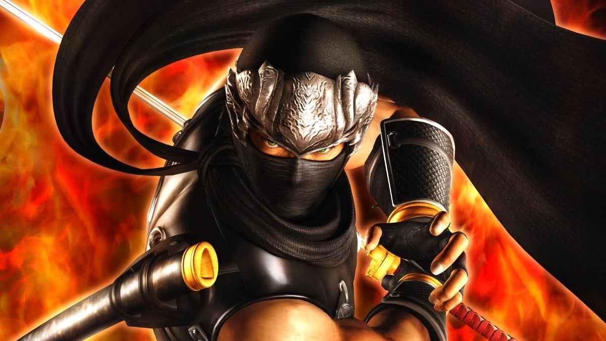 ninja gaiden new cropped hed