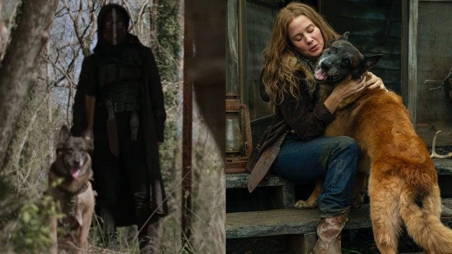The Walking Dead Dog Leah