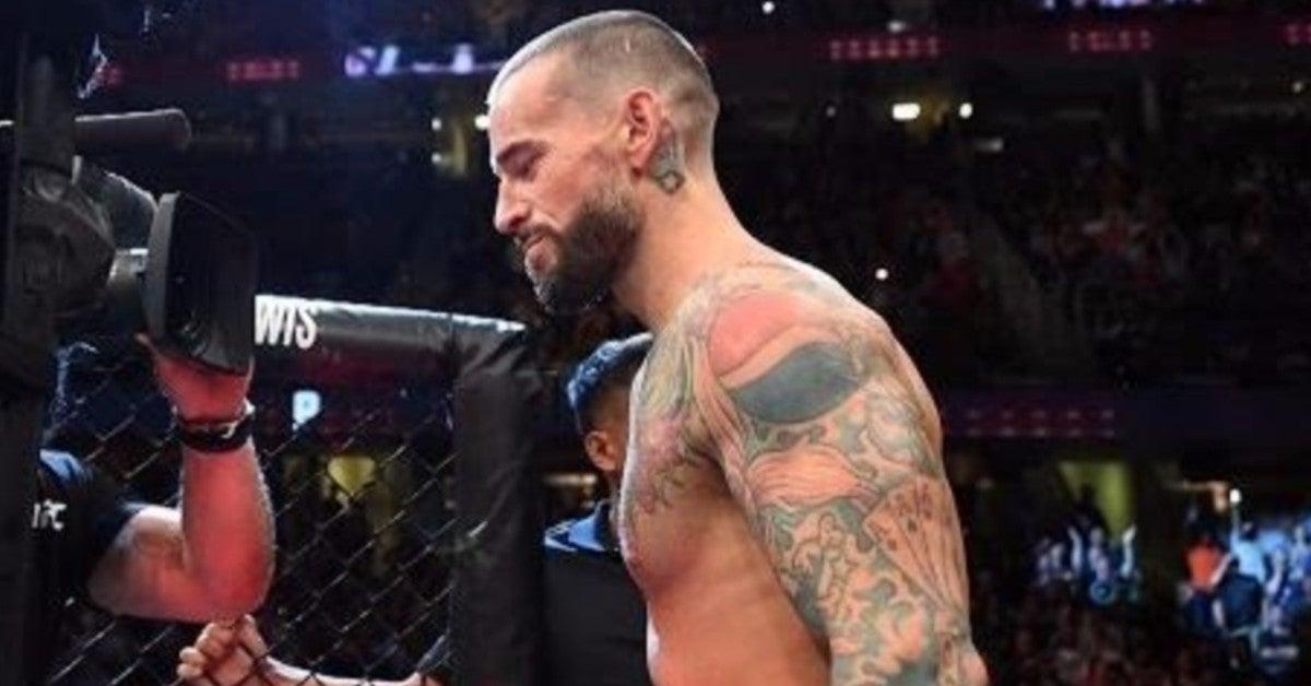 WWE-CM-Punk-UFC-Record