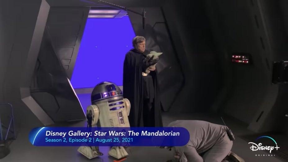 Disney Gallery Star Wars The Mandalorian Mark Hamill Luke Skywalker