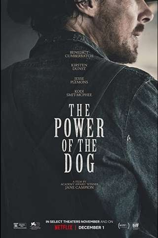 the_power_of_the_dog_default