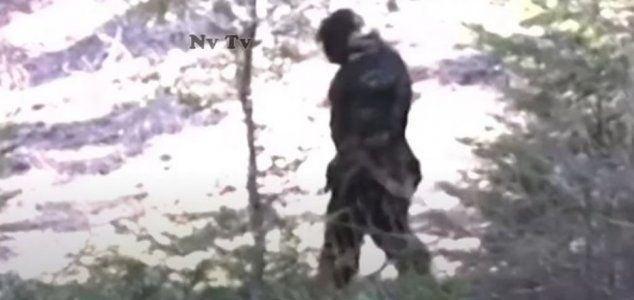 news-bigfoot-or-suit