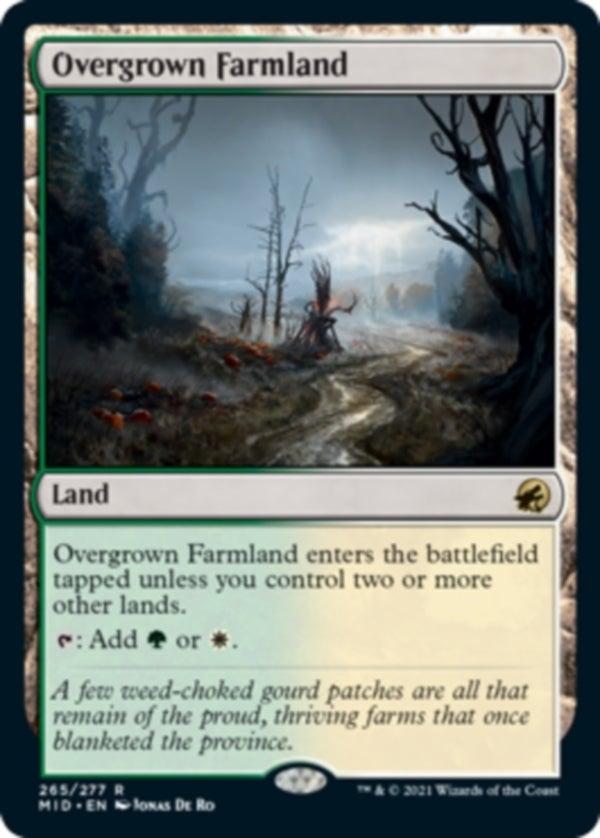 Overgrown_Farmland_EN