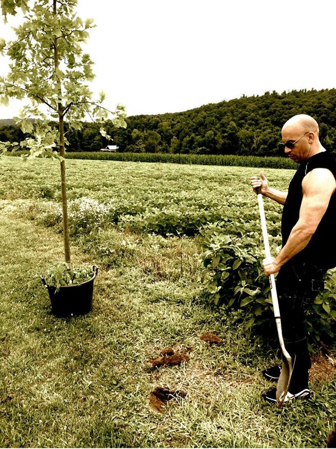 Vin Diesel plants a tree for Groot