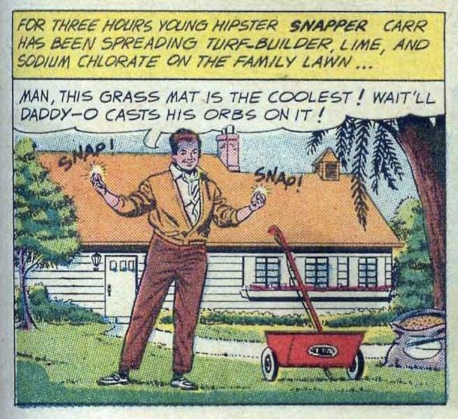 Snapper Carr