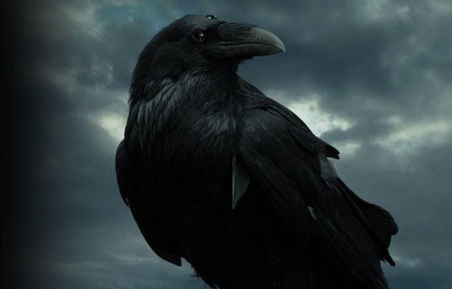 three-eyed-raven-113734