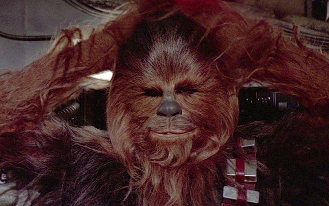 chewbacca-peter-mayhew