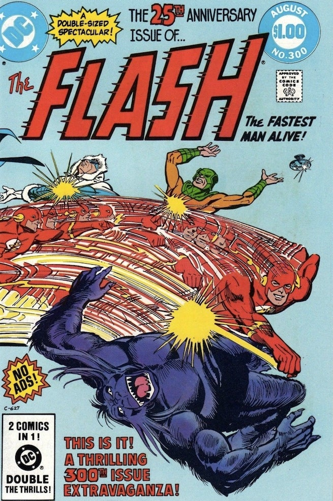 Flash 300 cover