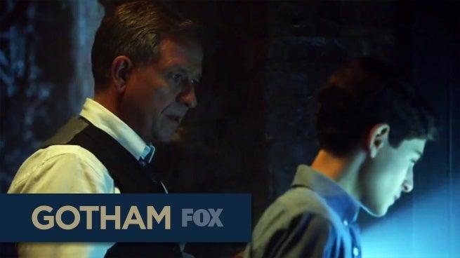 Gotham the cave