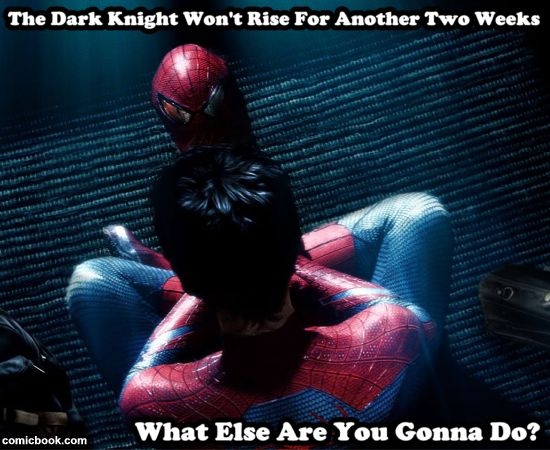 The Dark Knight Won't Rise For Another Two Weeks, What Else You Gonna Do?