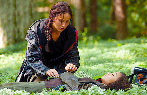 THG-stills-the-hunger-games-movie-29947816-500-325