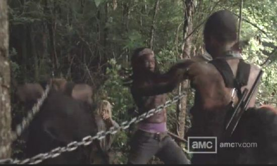Michonne kills her pets