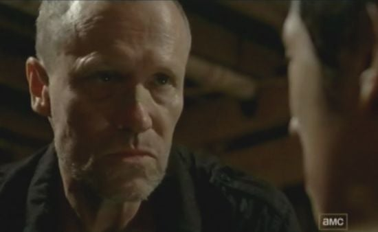 The Walking Dead When The Dead Come Knocking Merle & Glenn