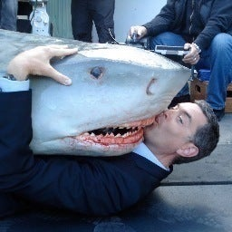 timothy-omundson-jaws