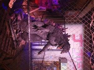 Godzilla_6456