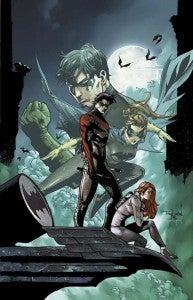 Nightwing_ann_1