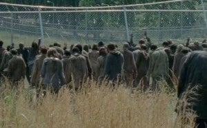 Walkers Crowd Together
