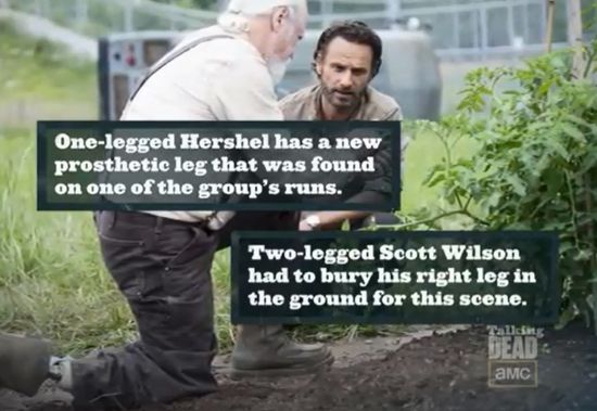 Hershel's Leg