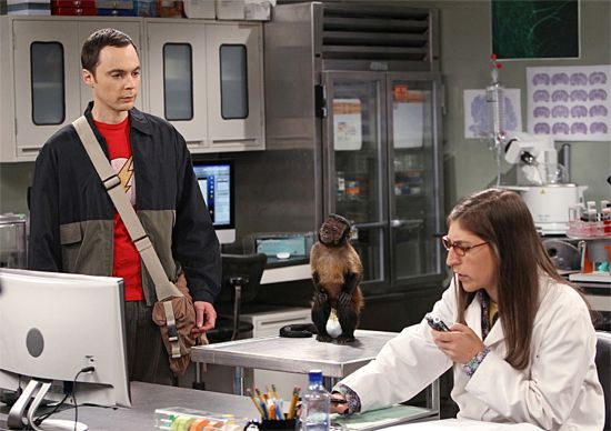 The Big Bang Theory The Workplace Proximity